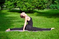 Γιόγκα Νέα περισυλλογή γιόγκας άσκησης γυναικών στη φύση στο πάρκο Έννοια τρόπου ζωής υγείας στοκ φωτογραφίες με δικαίωμα ελεύθερης χρήσης