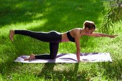 Γιόγκα Νέα περισυλλογή γιόγκας άσκησης γυναικών στη φύση στο πάρκο Έννοια τρόπου ζωής υγείας στοκ εικόνα