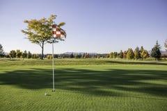 Γκολφ πράσινο και σφαίρα Στοκ φωτογραφία με δικαίωμα ελεύθερης χρήσης