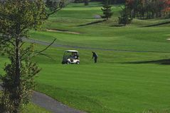 γκολφ πτώσης σειράς μαθη&m Στοκ Εικόνες