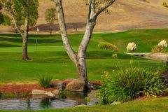 γκολφ σειράς μαθημάτων στοκ φωτογραφίες
