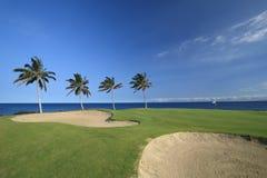 γκολφ Χαβάη σειράς μαθημάτων Στοκ Εικόνες