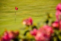 Γκολφ πράσινο με τη κόκκινη σημαία και τα κόκκινα λουλούδια Στοκ Φωτογραφία