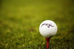 γκολφ σφαιρών που χτυπά την κίνηση σιδήρου Στοκ Εικόνα