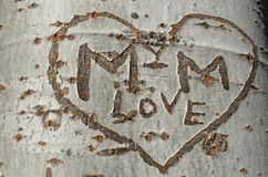 Γκράφιτι αγάπης σε ένα δέντρο Στοκ εικόνα με δικαίωμα ελεύθερης χρήσης