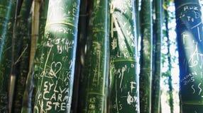 Γκράφιτι 1 μπαμπού Στοκ Εικόνα