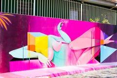 Γκράφιτι Σάο Πάολο Στοκ Εικόνες