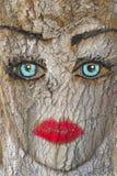 Γκράφιτι του προσώπου της γυναίκας στο δέντρο Στοκ εικόνα με δικαίωμα ελεύθερης χρήσης