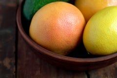 Γκρέιπφρουτ, αβοκάντο και λεμόνι στο κύπελλο στοκ εικόνες με δικαίωμα ελεύθερης χρήσης