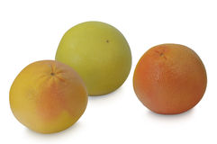 Γκρέιπφρουτ, πορτοκάλι και pomelo στο άσπρο υπόβαθρο Στοκ φωτογραφία με δικαίωμα ελεύθερης χρήσης