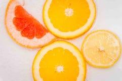 Γκρέιπφρουτ, πορτοκαλί λεμόνι στοκ εικόνες