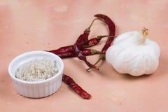 Γκρίζα αλατισμένα, ξηρά κόκκινα πιπέρια και σκόρδο στο κεραμίδι του Saltillo Στοκ Εικόνες
