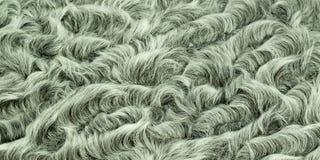 Γκρίζα γούνα αρνιών Στοκ φωτογραφία με δικαίωμα ελεύθερης χρήσης