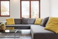 Γκρίζα και κίτρινα μαξιλάρια Στοκ Εικόνες