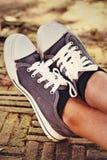 Γκρίζα πάνινα παπούτσια - εξαρτήματα και φορετός (πάνινα παπούτσια) Στοκ Εικόνα