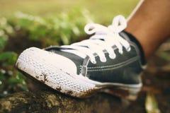 Γκρίζα πάνινα παπούτσια - εξαρτήματα και φορετός (πάνινα παπούτσια) Στοκ Εικόνες