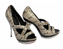 γκρίζα παπούτσια Στοκ Εικόνες