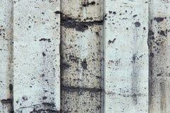 Γκρίζα συγκεκριμένη λουρίδα Στοκ φωτογραφίες με δικαίωμα ελεύθερης χρήσης