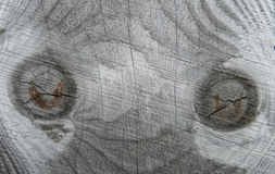γκρίζα σύσταση ξύλινη Στοκ Εικόνες