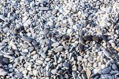 Γκρίζα χαλίκια θάλασσας Στοκ εικόνες με δικαίωμα ελεύθερης χρήσης