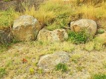 Γκρίζοι βράχοι ή λίθοι και πράσινες και κίτρινες χλόες στοκ εικόνες με δικαίωμα ελεύθερης χρήσης