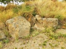 Γκρίζοι βράχοι ή λίθοι και πράσινες και κίτρινες χλόες στοκ φωτογραφία με δικαίωμα ελεύθερης χρήσης