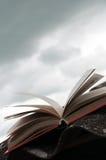 γκρίζος ανοικτός κόκκιν&omicr Στοκ εικόνες με δικαίωμα ελεύθερης χρήσης
