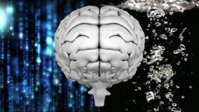 Γκρίζος εγκέφαλος με την τεχνολογία και το υπόβαθρο νερού διανυσματική απεικόνιση