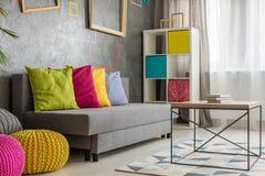 Γκρίζος καναπές με το χρωματισμένο μαξιλάρι Στοκ εικόνα με δικαίωμα ελεύθερης χρήσης