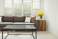 Γκρίζος καναπές στην απλή ρύθμιση Στοκ Εικόνες