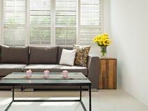 Γκρίζος καναπές στην απλή ρύθμιση Στοκ Εικόνα