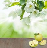 Γκρίζος κενός ξύλινος πίνακας, οργανικά φρούτα της Apple Στοκ φωτογραφία με δικαίωμα ελεύθερης χρήσης