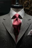 γκρίζος κόκκινος δεσμός σακακιών Στοκ Εικόνες