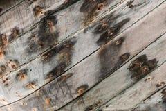 Γκρίζος ο ξύλινος Στοκ εικόνες με δικαίωμα ελεύθερης χρήσης