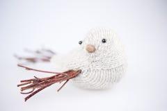 γκρίζος πουλιών πλεκτός Στοκ Εικόνες