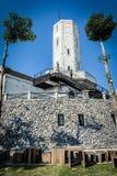 Γκρίζος πύργος βράχου στοκ εικόνα
