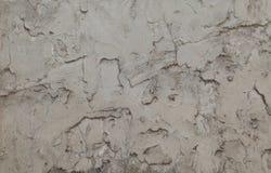 Γκρίζος τοίχος ασβεστοκονιάματος Στοκ Φωτογραφία