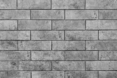 Γκρίζος τοίχος κεραμιδιών τούβλου Στοκ Εικόνα