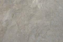 Γκρίζος τοίχος τσιμέντου Στοκ Εικόνες
