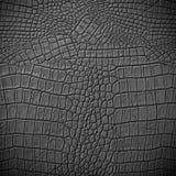 Γκρίζο δέρμα Στοκ φωτογραφία με δικαίωμα ελεύθερης χρήσης