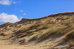 Γκρίζο ίχνος αμμόλοφων του εθνικού πάρκου οβελών Curonian Στοκ Φωτογραφίες