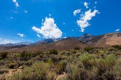Γκρίζο βουνό περιοχή-Inyo εθνική δασικός-Καλιφόρνια Στοκ Εικόνες