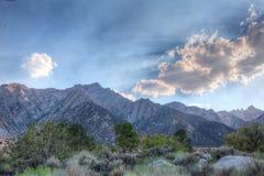 Γκρίζο βουνό περιοχή-Inyo εθνική δασικός-Καλιφόρνια Στοκ φωτογραφία με δικαίωμα ελεύθερης χρήσης