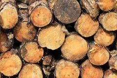 γκρίζο ελαφρύ δάσος κούτσουρων πυρκαγιάς woodpile στοκ εικόνες