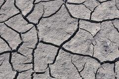 Γκρίζο ραγισμένο χώμα Στοκ φωτογραφία με δικαίωμα ελεύθερης χρήσης