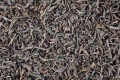 γκρίζο τσάι κόμη Στοκ εικόνες με δικαίωμα ελεύθερης χρήσης