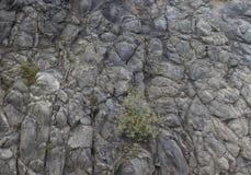 Γκρίζο υπόβαθρο πανοράματος βουνών βράχου - σύσταση πετρών Στοκ Φωτογραφία