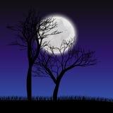 Γκρίζο φεγγάρι Στοκ Εικόνα