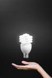 γκρίζο φως χεριών βολβών ανασκόπησης Στοκ εικόνα με δικαίωμα ελεύθερης χρήσης