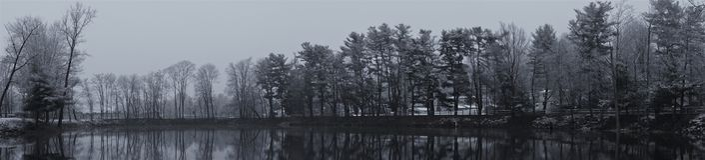 Γκρίζο χειμερινό πανόραμα ακόμα της λίμνης και των δέντρων στοκ φωτογραφία με δικαίωμα ελεύθερης χρήσης